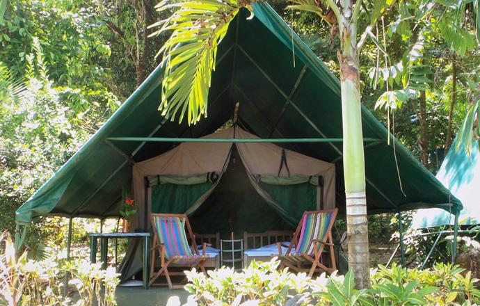 camping corcovado drake bay